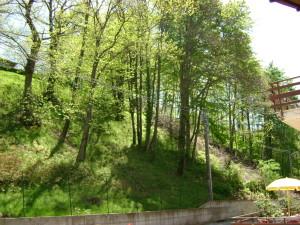 vista panoramica boschi valsesia